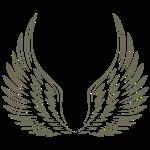 wings7