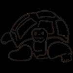schildkröte landschildkroete aus den seychellen und glapagos