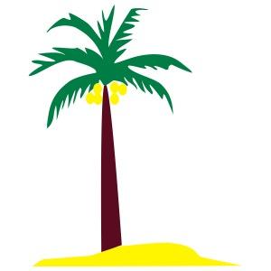 cocotier COCONUT TREE