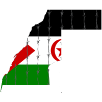 Freedom for Western Sahara