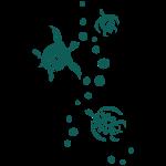 Muster Wasserschildkröten 2