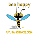 bee_happy_bon_dpi_jaune
