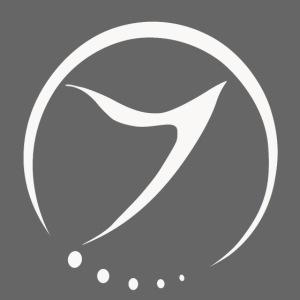 zenon logo 01 copy png