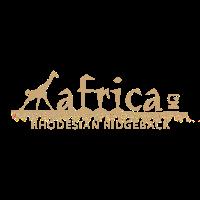Rhodesian Ridgeback DD