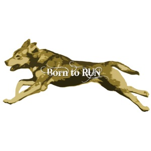 Born_to_Run---light-orange.png