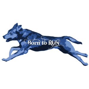 Born_to_Run---light-blue.png