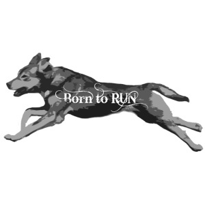 Born_to_Run---gray.png