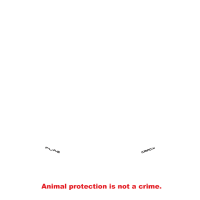 A.L.F. Supporter | Animal Liberation Front