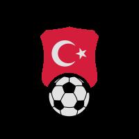 Fussball Wappen Türkei Türkye