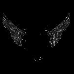 skullwingsstarsbigger.png