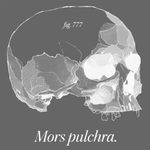 Mors Pulchra II white