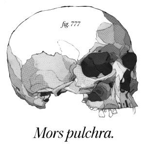 Mors Pulchra II black