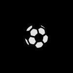 goal voetbal