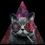 Hipster Cat Rauchen