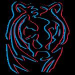 3d anaglyph tiger wood