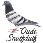 Oude Snuifduif1.jpg