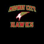 DCU-hawks.png