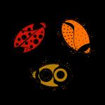 Käfer im Kreis.png