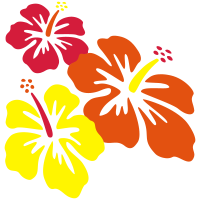 Hibiscus Drilling