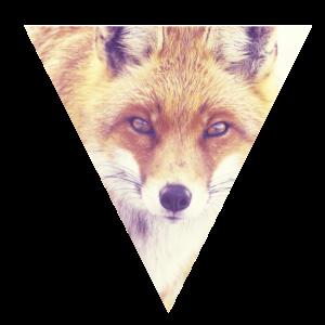 _Fox Retro