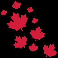 Canada Maple Leave Rain