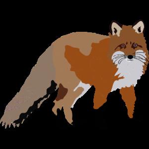 Vintage Fuchs