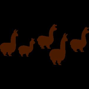 M-5 Lamas