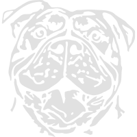 653W Renascence Bulldog