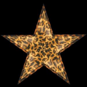 Star Leppard