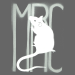 MRC 'Banksy' rat - white