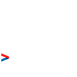 Snowden Quote (for black/colour tees)