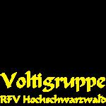 Logo_Volti7