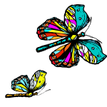 bunte Schmetterlinge zwei.png