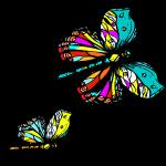 zwei bunte Schmetterlinge