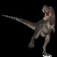 tarbosaurus2