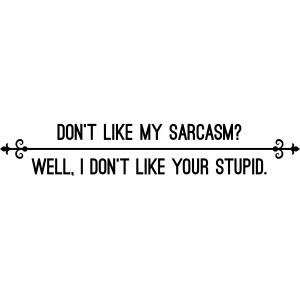 Dont like my sarcasm? Well i dont like your stupid
