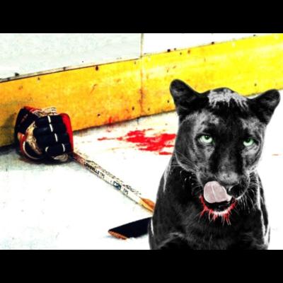 Panther - null - Panthers,Panther,Florida,Eishockey,Blut,Augsburg,AEV