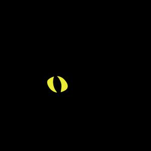 süße Katze, zwinkernd / Augenzwinkernd
