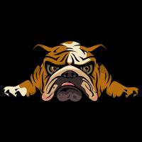 lazy_bulldog