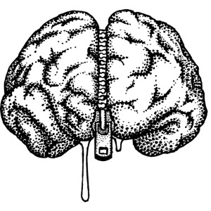brain large2 png