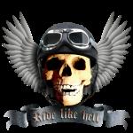 biker_skull_a