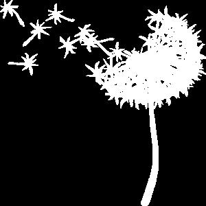 Pusteblume Weiß