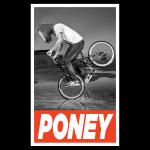 PONEY BMX.jpg
