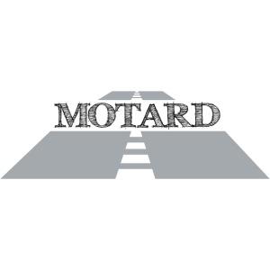 Road Motard