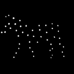 Pferd Pünktchen