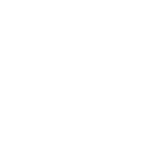 Bremner In The Nets