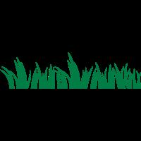 Oktoberfest Wiesen Gras