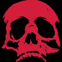 Skull Riss