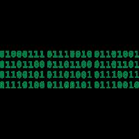 Grillmeister binär