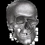 twinkle skull
